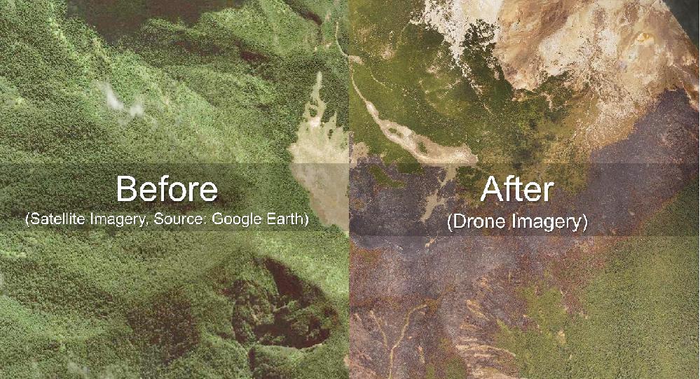 Kebakaran hutan - Terra Drone Indonesia